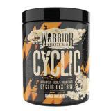 RECENZE: WARRIOR - Cyclic