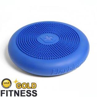 Balance Trainer   Harbinger